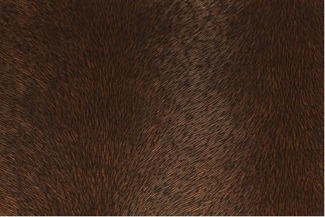 Искусственная кожа (Morocco Brown)