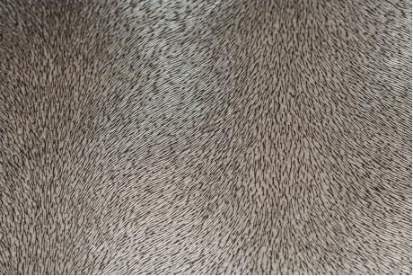 Искусственная кожа (Sand Dune)