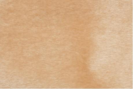 Искусственный мех нерпа (Tan)