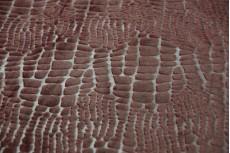 Костюмно-пальтовая Congo Brown