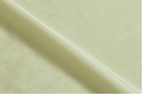 Плащевка Лаке (Green Mist)
