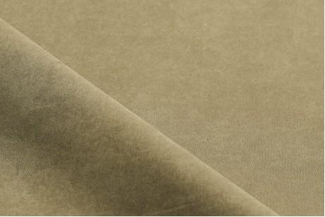 Плащевка мурена (Pale Oyster)